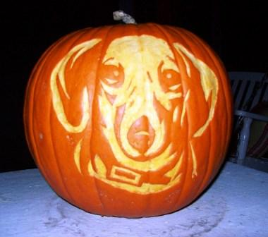 Dog_pumpkin