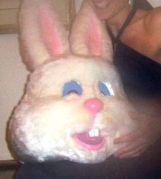 Bunny_head